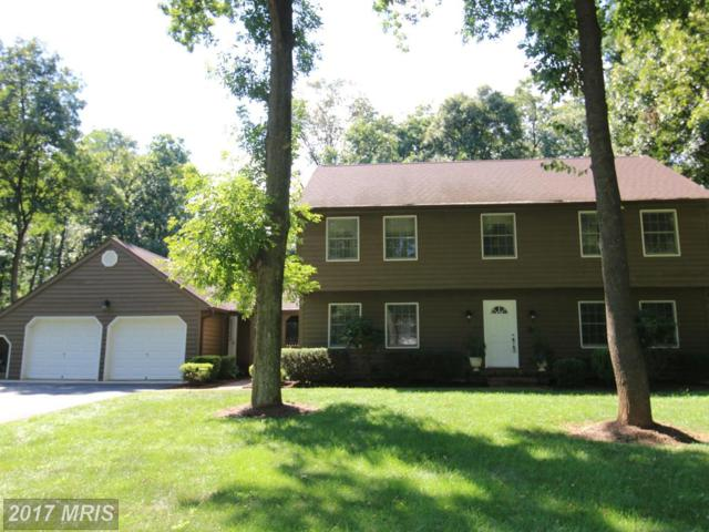111 International Court, Martinsburg, WV 25403 (#BE9896105) :: Pearson Smith Realty
