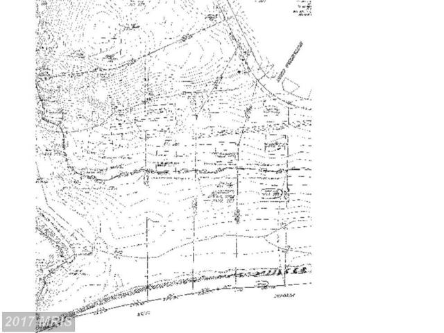 Americana Lane, Hedgesville, WV 25427 (#BE9903937) :: LoCoMusings