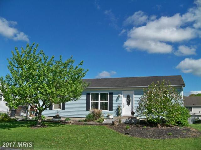 205 Cashmere Drive, Martinsburg, WV 25404 (#BE9926029) :: LoCoMusings