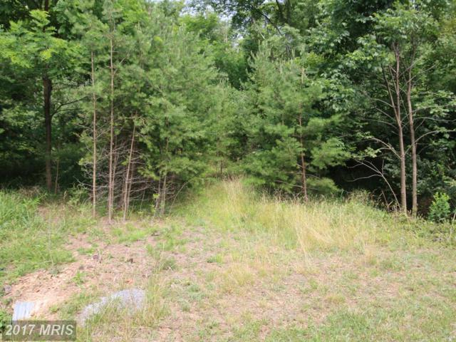 Break Away Road, Hedgesville, WV 25427 (#BE9926612) :: Pearson Smith Realty