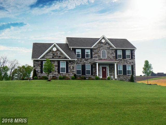 Statice Drive, Hedgesville, WV 25427 (#BE9927506) :: Pearson Smith Realty