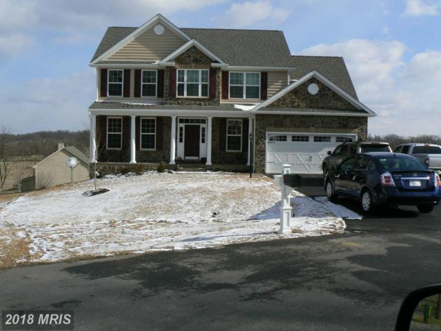 Snap Dragon Circle, Hedgesville, WV 25427 (#BE9927524) :: Pearson Smith Realty