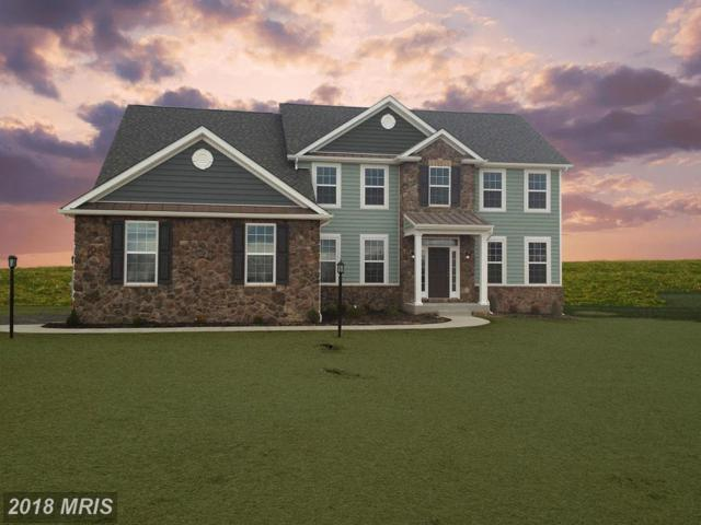 Statice Drive, Hedgesville, WV 25427 (#BE9927575) :: Pearson Smith Realty