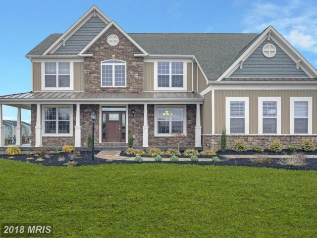 Statice Drive, Hedgesville, WV 25427 (#BE9928568) :: Pearson Smith Realty
