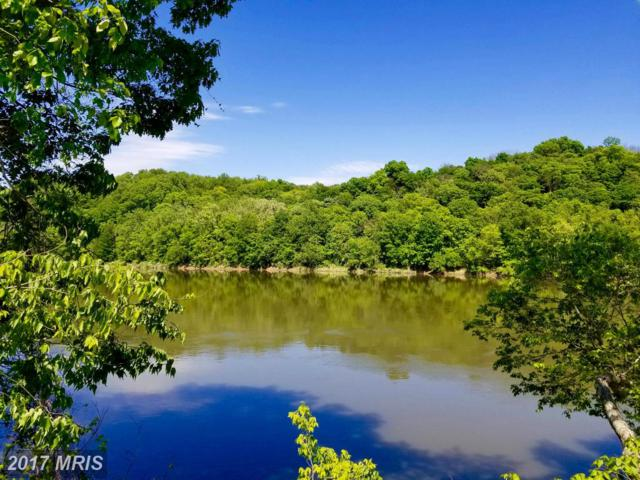 LOT 83 Americana Lane, Hedgesville, WV 25427 (#BE9948860) :: The Gus Anthony Team
