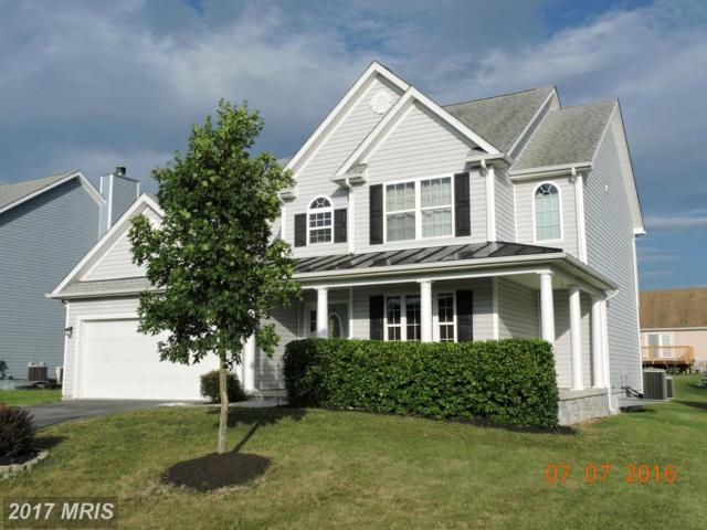 247 Webber Springs Drive, Inwood, WV 25428 (#BE9958302) :: Pearson Smith Realty