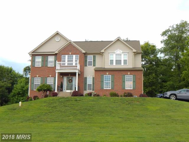 160 Tasley Court, Martinsburg, WV 25403 (#BE9961690) :: Pearson Smith Realty