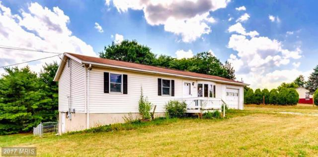 292 Avondale Road, Martinsburg, WV 25401 (#BE9965996) :: Pearson Smith Realty