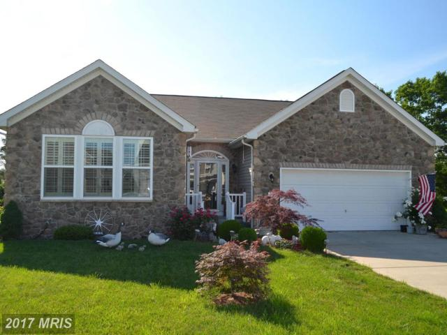 320 Brandenburg Drive, Falling Waters, WV 25419 (#BE9968159) :: Pearson Smith Realty