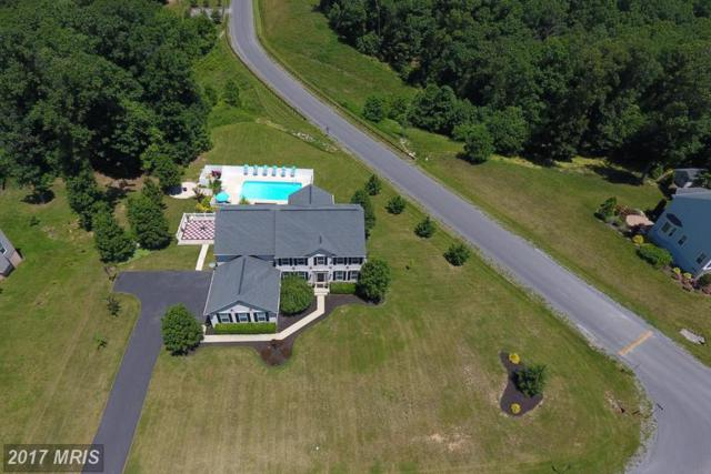 283 Rippling Waters Way, Falling Waters, WV 25419 (#BE9968720) :: LoCoMusings
