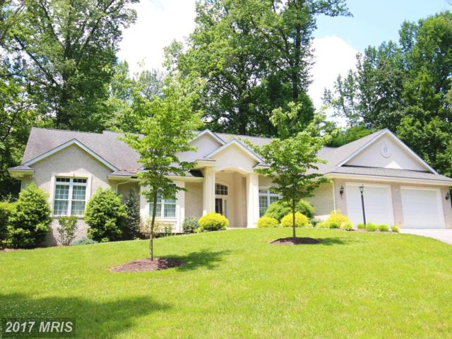231 Minnick Road, Inwood, WV 25428 (#BE9969633) :: Pearson Smith Realty