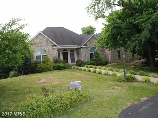15 Riordan Drive, Martinsburg, WV 25403 (#BE9977069) :: LoCoMusings