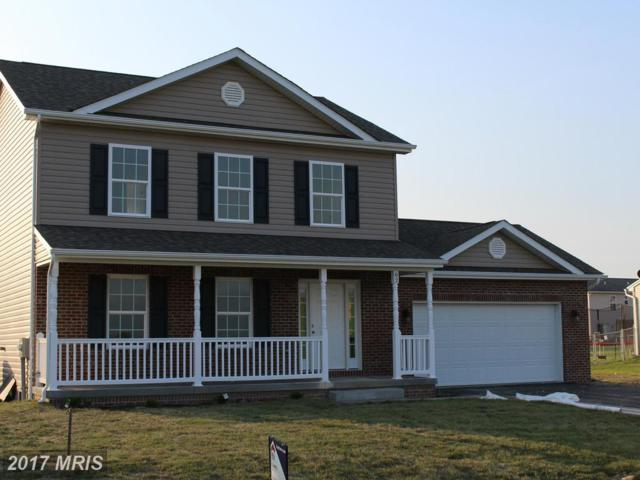 167 Moody Drive, Martinsburg, WV 25405 (#BE9986981) :: Pearson Smith Realty