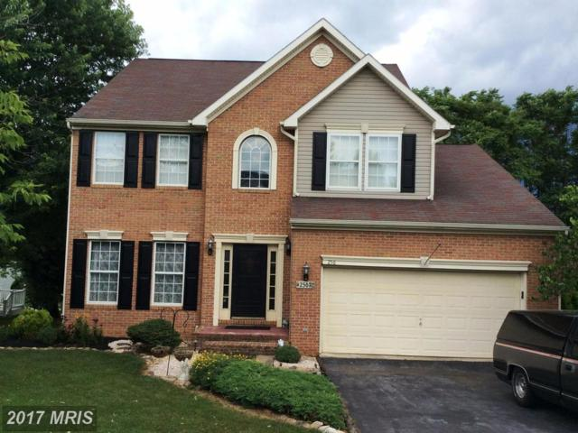 256 Larkspur Lane, Martinsburg, WV 25403 (#BE9988432) :: Pearson Smith Realty