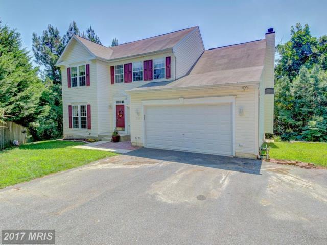 2719 Oak Ridge Drive, Chesapeake Beach, MD 20732 (#CA10012864) :: Pearson Smith Realty