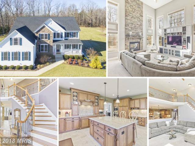 968 Falls Pointe Way, Huntingtown, MD 20639 (#CA10138135) :: Pearson Smith Realty