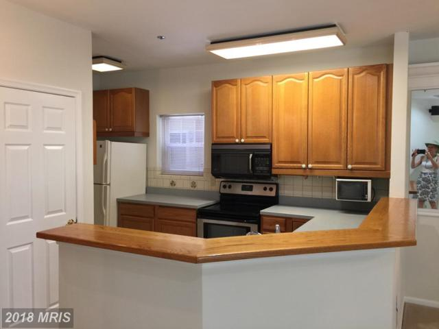102 Square Rigger Way #102, Solomons, MD 20688 (#CA10200819) :: Bob Lucido Team of Keller Williams Integrity