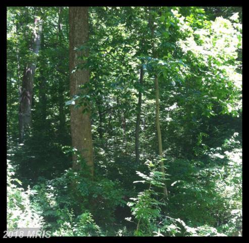 4410 Woodview Lane, Prince Frederick, MD 20678 (#CA10207242) :: Keller Williams Pat Hiban Real Estate Group