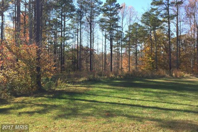 6152 Federal Oak Drive, Sunderland, MD 20689 (#CA9804155) :: Pearson Smith Realty