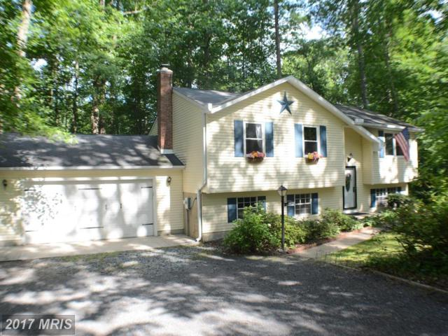 8921 Limerick Lane, Owings, MD 20736 (#CA9973222) :: Pearson Smith Realty