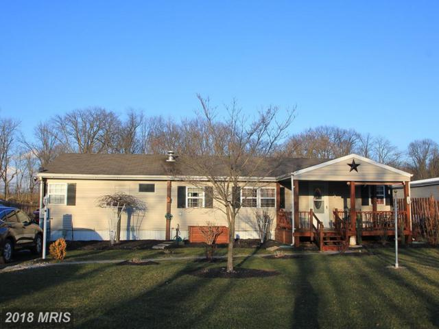 253 Neil Road, Shippensburg, PA 17257 (#CB10181729) :: The Gus Anthony Team