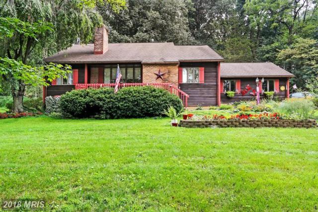 415 Springfield Road, Shippensburg, PA 17257 (#CB10332046) :: Browning Homes Group