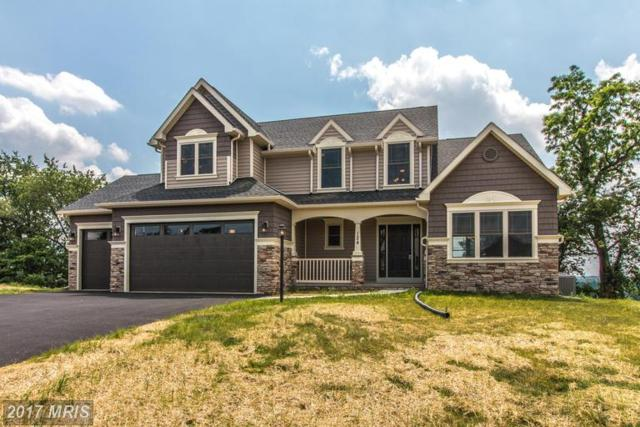 124 Feather Drive, Shippensburg, PA 17257 (#CB9846732) :: LoCoMusings