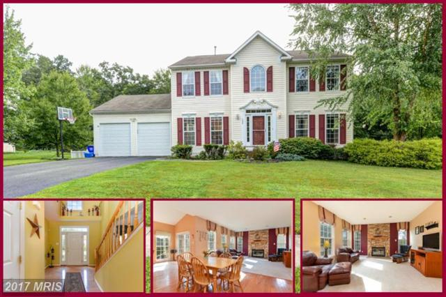 139 Watson Way, North East, MD 21901 (#CC10037461) :: Pearson Smith Realty