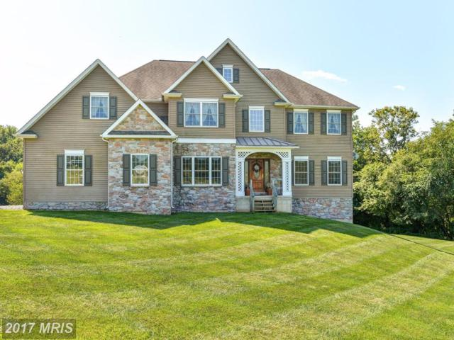 159 Long Drive, Elkton, MD 21921 (#CC10046445) :: Pearson Smith Realty