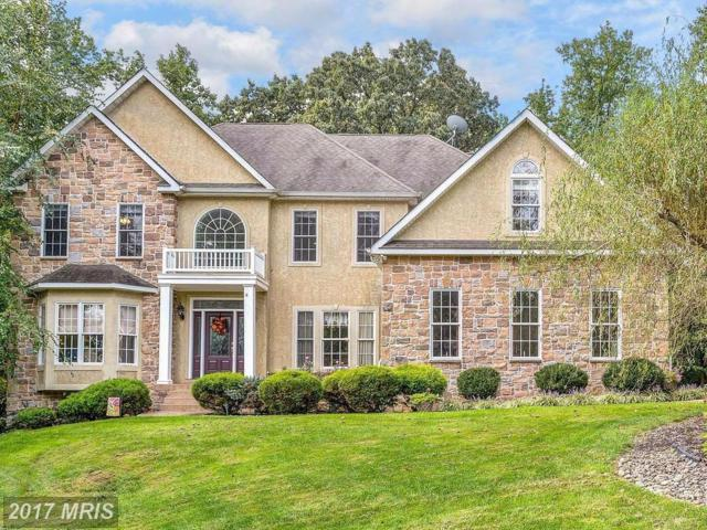 106 Wood Chip Road, Elkton, MD 21921 (#CC10068512) :: Pearson Smith Realty