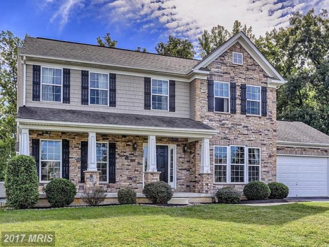226 Flintstone Drive, North East, MD 21901 (#CC10075842) :: Pearson Smith Realty