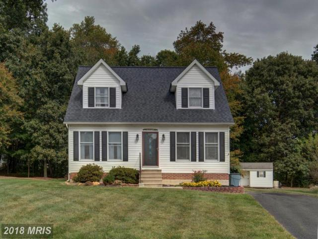 5 Ashmed Court, Elkton, MD 21921 (#CC10075883) :: Pearson Smith Realty
