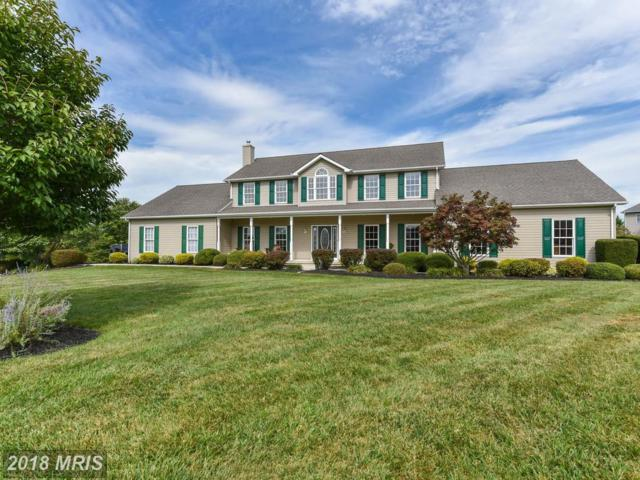 68 Chads Way, Port Deposit, MD 21904 (#CC10084283) :: Pearson Smith Realty