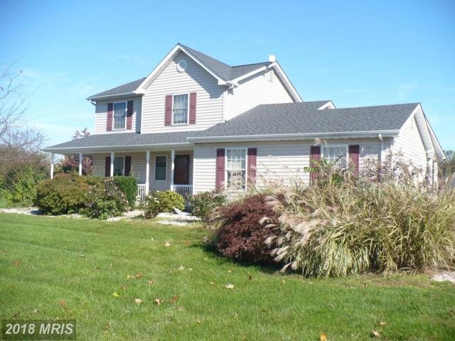 56 Woodcrest Drive, Elkton, MD 21921 (#CC10092575) :: Pearson Smith Realty