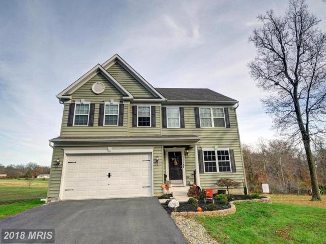 2114-A Theodore Road, Rising Sun, MD 21911 (#CC10109439) :: Pearson Smith Realty