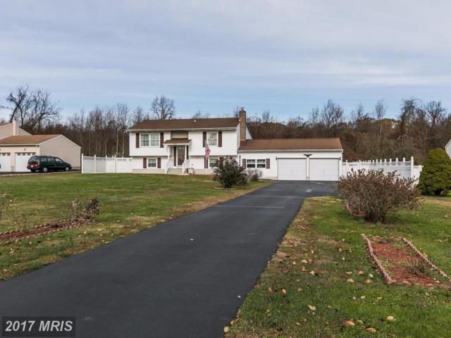 101 Tulip Drive, Conowingo, MD 21918 (#CC10109551) :: Pearson Smith Realty