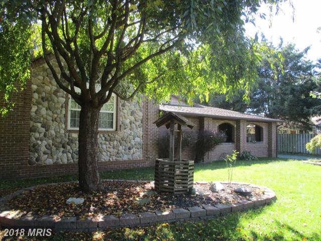 32 Oak Avenue, Earleville, MD 21919 (#CC10111194) :: Keller Williams Pat Hiban Real Estate Group