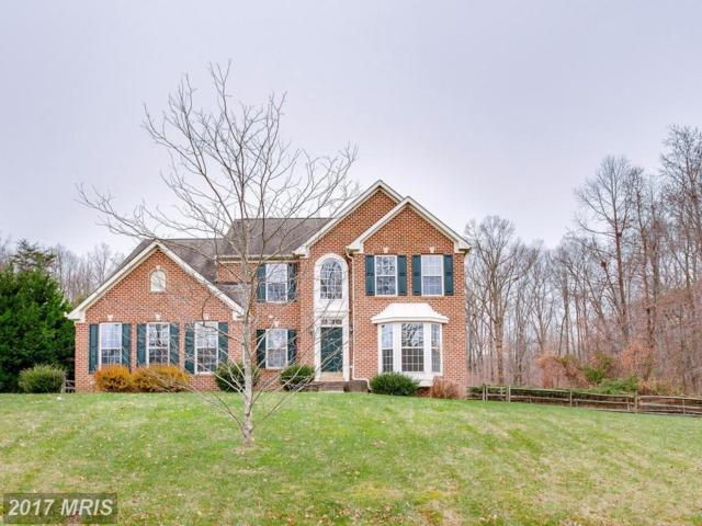 108 Bethel Springs Drive, North East, MD 21901 (#CC10116596) :: The MD Home Team