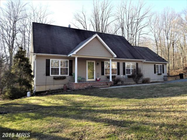 299 Goosemar Road, Rising Sun, MD 21911 (#CC10124991) :: Pearson Smith Realty