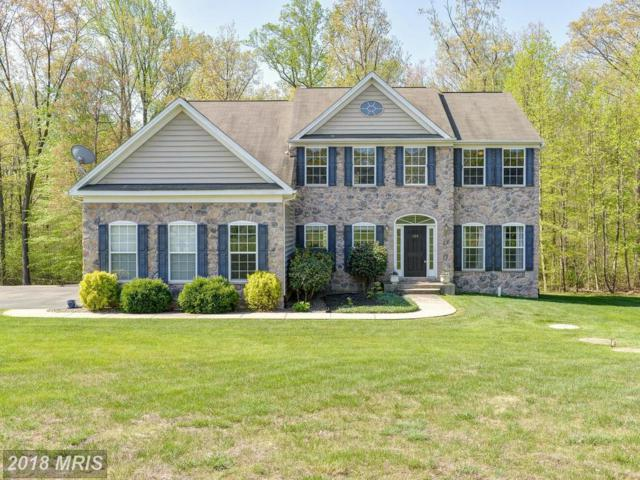 158 Forest Knoll Drive, Elkton, MD 21921 (#CC10224244) :: Keller Williams Pat Hiban Real Estate Group