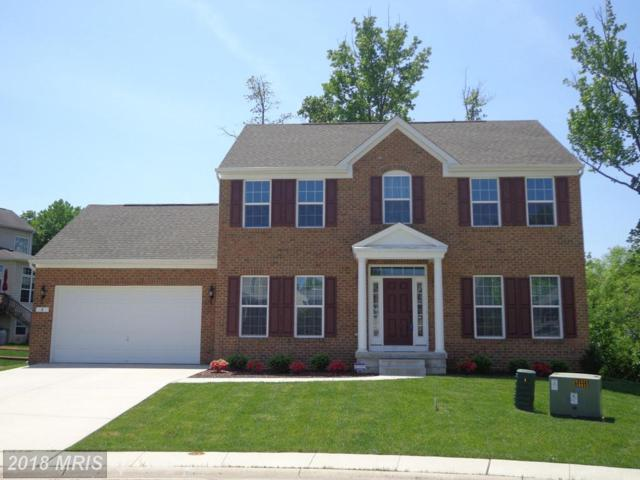 4 Shepherd Way, Elkton, MD 21921 (#CC10225164) :: The Maryland Group of Long & Foster