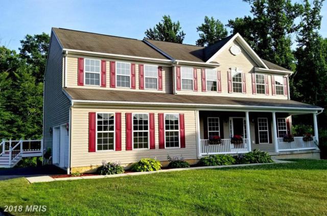 182 Forest Knoll Drive, Elkton, MD 21921 (#CC10294247) :: RE/MAX Executives