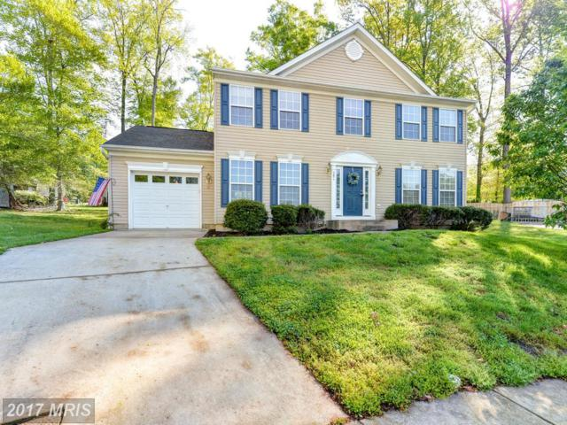 204 Franklin Court, Elkton, MD 21921 (#CC9931319) :: Pearson Smith Realty