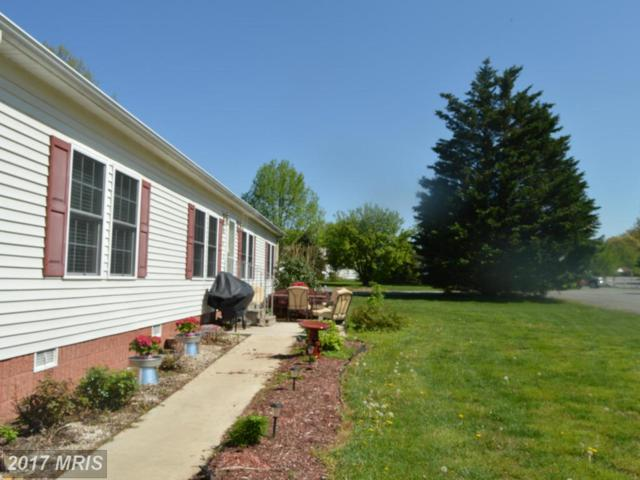43 York Dr, Port Deposit, MD 21904 (#CC9935734) :: Pearson Smith Realty