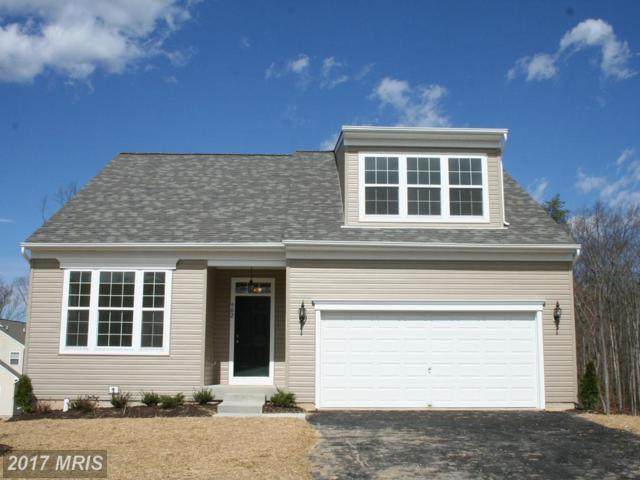 1 Claiborne Road, North East, MD 21901 (#CC9939216) :: Pearson Smith Realty