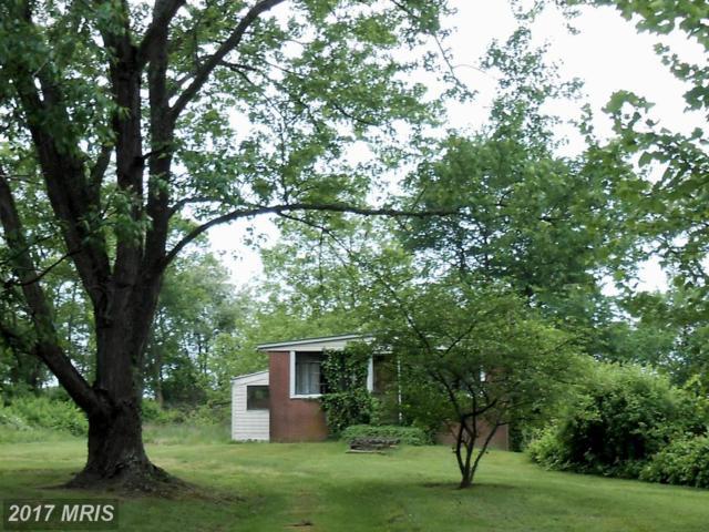 1551 Augustine Herman Highway, Elkton, MD 21921 (#CC9944736) :: LoCoMusings