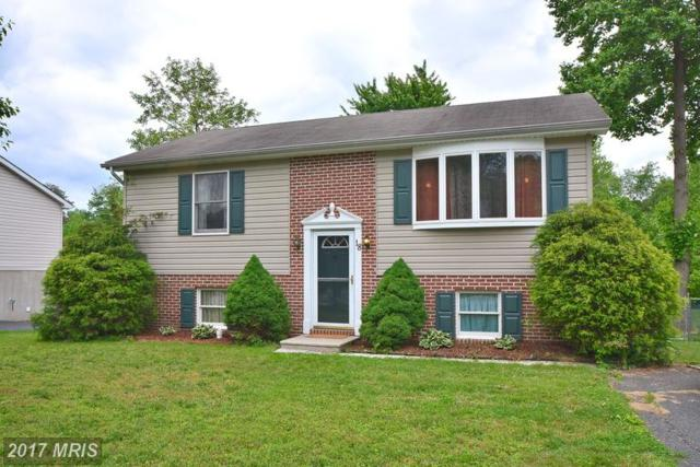 18 White Birch Drive, North East, MD 21901 (#CC9959904) :: LoCoMusings
