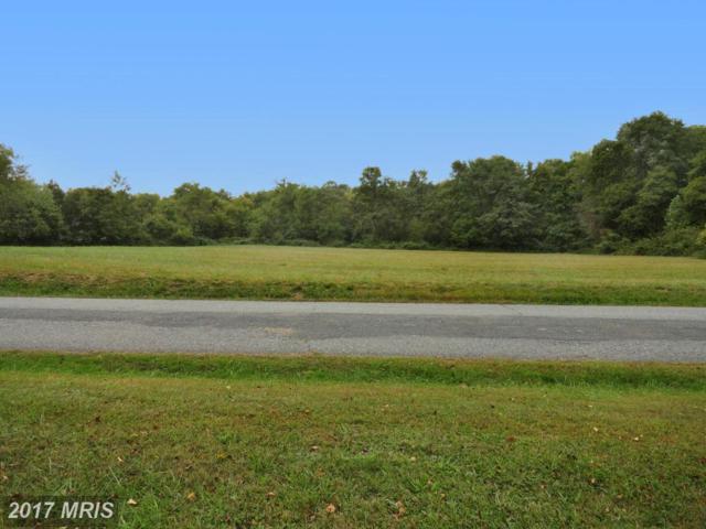 Schoolhouse Lane, Conowingo, MD 21918 (#CC9963516) :: Pearson Smith Realty