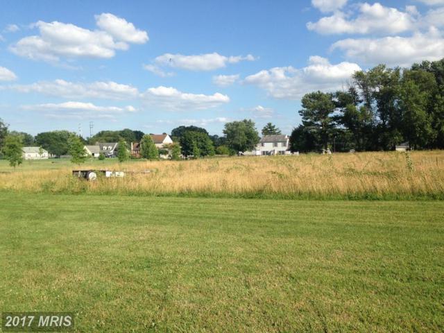 Canal Estates Drive, Elkton, MD 21921 (#CC9980160) :: Pearson Smith Realty