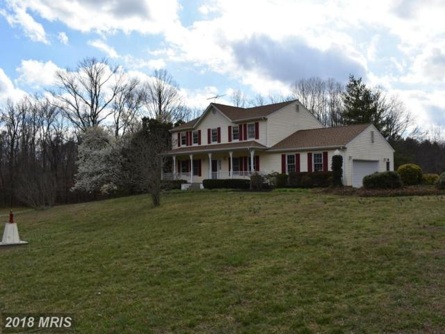 10205 Trinity Church Road, Charlotte Hall, MD 20622 (#CH10017598) :: Pearson Smith Realty